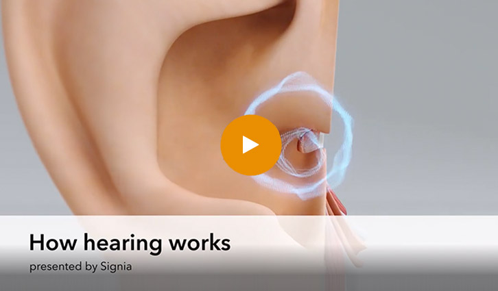 How Hearing Works - Video Thumbnail